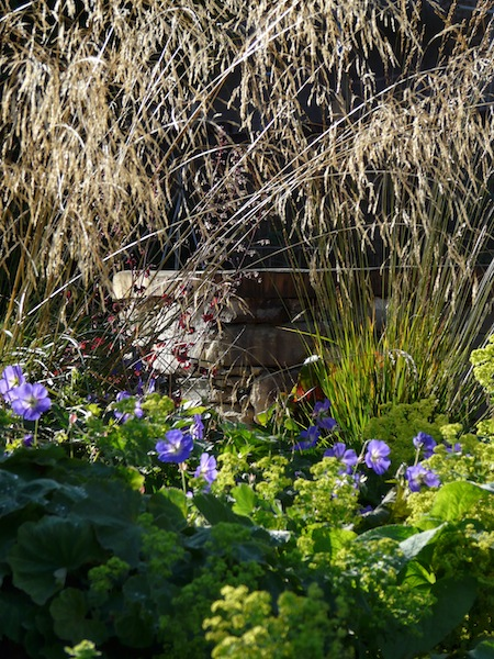 Garden Design – Secret Gardens