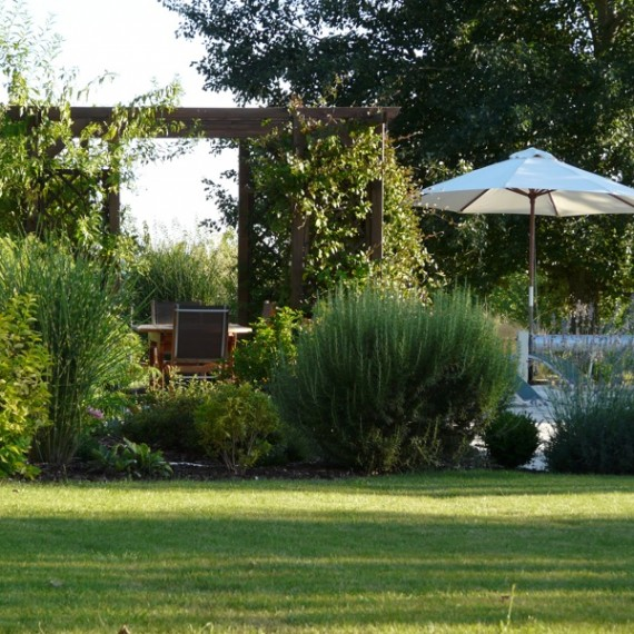 Wooden pergola with climbers creates shade by the pool. Garden designed by Carolyn Grohmann