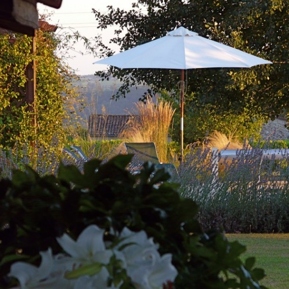 Evening sun catches the ornamental grasses with the view towards the Dordogne river. Garden designed by Carolyn Grohmann.
