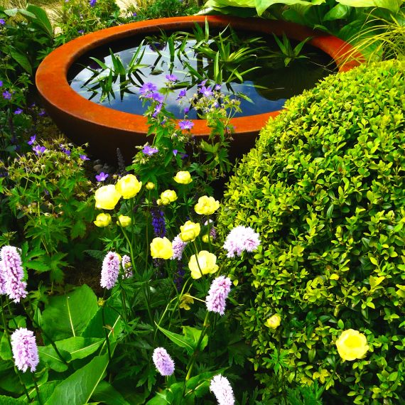 Gold Medal winner designed by Carolyn Grohmann, 2014 Gardening Scotland, built for the Freedom From Fistula Foundation Charity, Urbis lily bowl, plants supplied by Binny Plants