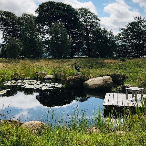 Wildlife pond with Scottish larch deck and Helen Dennerly's heron sculpture. Garden designed by Carolyn Grohmann