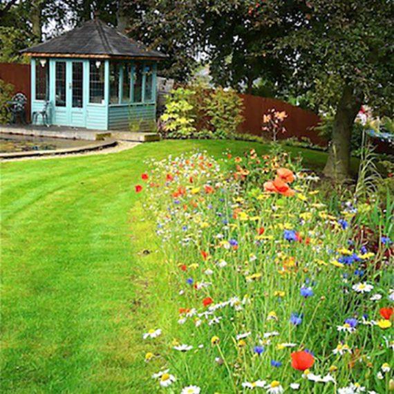 Garden Design - Secret Gardens | West Lothian Garden